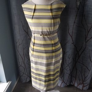 Calvin Klein Yellow Gray Stripe Belt Sheath Dress